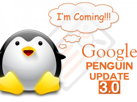 Penguin Updates By SERP and SEO
